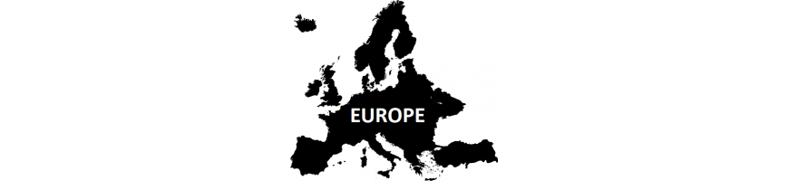 Ants from Europe