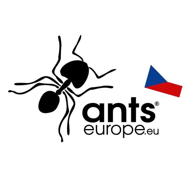 Ants Europe ®